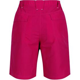 Regatta Chaska Spodnie krótkie Kobiety, dark cerise